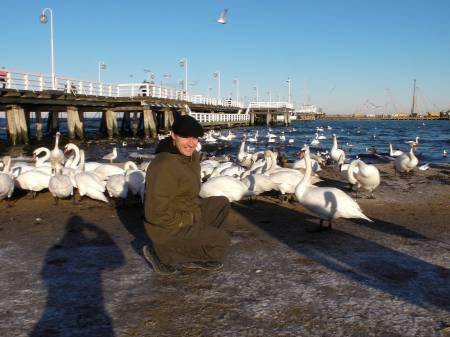 Steve Among Swans.